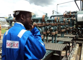Assa North and Ohaji South, Seplat at the London Stock Exchange, ANOH Gas Processing, Seplat denies owing FG, Seplat Petroleum pays N10.6bn dividend for FY 2018, Presidential Panel investigate Seplat and NPDC, Seplat short-change FG, Seplat Petroleum Development Company