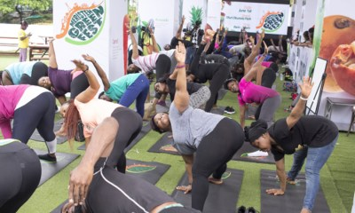 Meristem Green Fest, healthy living festival in Nigeria