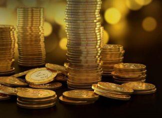 shareholder investment