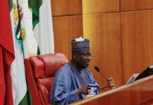 Senate shatters its three-years' record as it set date to pass 2020 Budget , NASS pledges support to AMCON on debt recovery , Ban to curtail generator importation faces strict resistance by Senate , Senate to probe GenCos, DisCos as Nigerian companies relocate to Ghana over power supply , JUST IN: Finance Bill, 6 other bills, passed into law , Nigerians react to Social Media Bill, mock lawmakers over similarity with Singapore ,