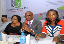 Guinea Insurance seeks to raise capital to N12 billion