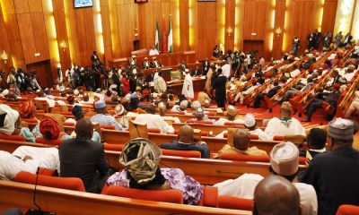 Senate urges FG to diversify from crude oil to natural gas production , Senate seeks textile importation ban , Senate receives six aviation sector bills from Buhari , PenCom: Constitute a board, NASS and pension operators tell FG, Nigeria's total debt now N33trn —Senate, Senate confirms appointment of board members for NDIC, law reform commission, Senate to confirm reappointment of Danbatta as NCC boss, Senate investigates claims of NELMCO, AEDC over govt asset