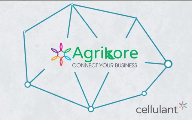 Cellulant holds Agribusiness summit, creates opportunities for 1 million youth