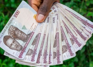 COVID-19 could save naira from depreciating further