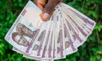 COVID-19 could save naira from depreciating further, Many odds against the naira, Naira forwards and parallel market crash puts pressure on official exchange rate, Naira appreciates to N386.94 to $1 at investor and exporters window. , Naira set for recovery as ABCON issues guideline to members for forex sales resumption, Naira falls against the Euro, British pound sterling but gains against the U.S dollar, Naira falls at black market, dollar liquidity remains relatively low  , Forex, Naira drops further at the black market despite appreciating at I&E window
