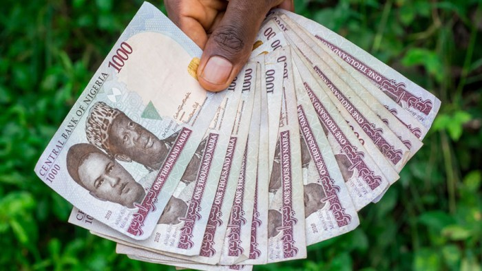 COVID-19 could save naira from depreciating further, Many odds against the naira, The naira is falling
