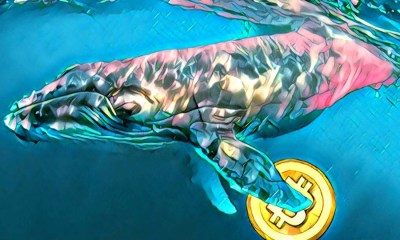 Whales transfer Bitcoins at an alarming rate, BTC whale moves 10,250 BTC valued at $95,000,000