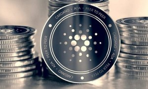 Cardano on a grand slam win, in the middle of a big purchase
