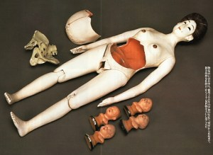 19th-century obstetric training doll - Wada Museum