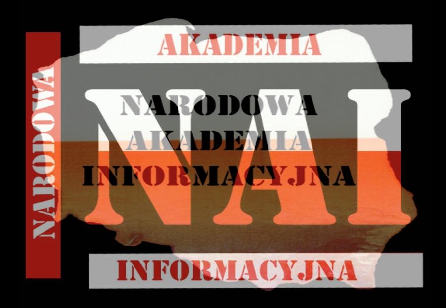 Narodowa Akademia Informacyjna (2/2)