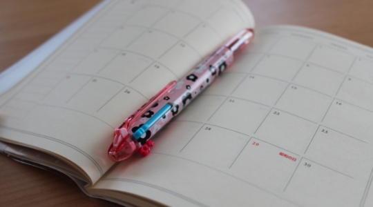 内臓脂肪 日記