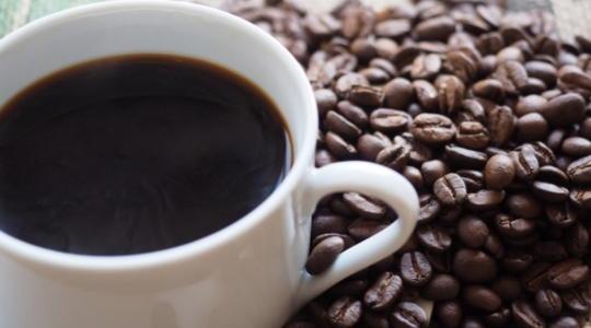 内臓脂肪 カフェイン