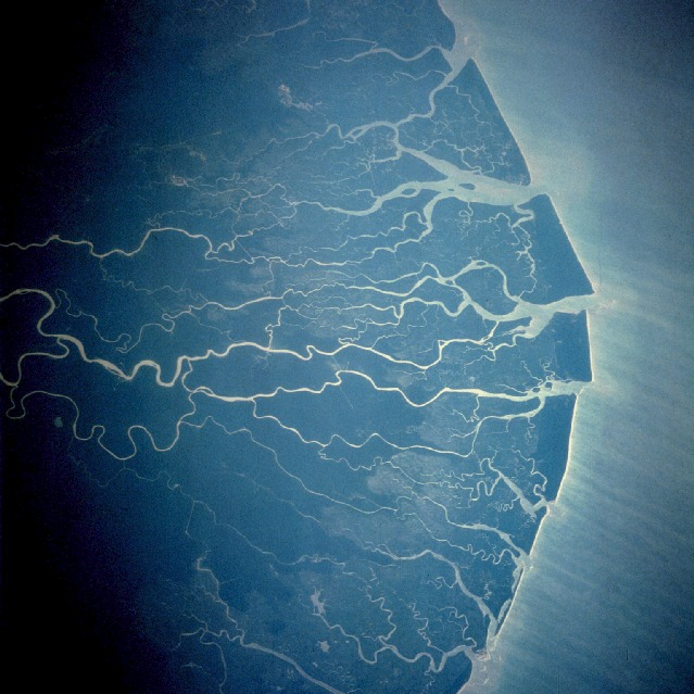 Niger River Delta from space