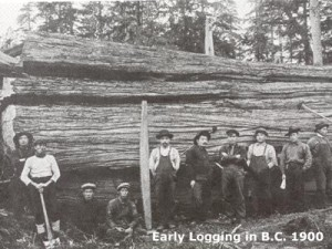 Early logging in BC