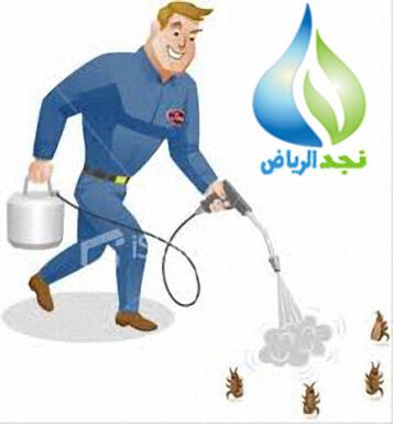 شركة مكافحة حشرات بالخرج 0502977689 رش البق والنمل الابيض