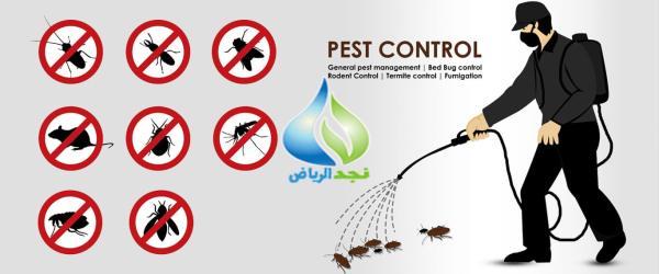 شركة رش صراصير بالخرج 0502977689 مكافحة النمل والفئران والصراصير