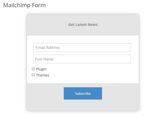 Subscription Form (frontend)