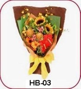 HB03-1