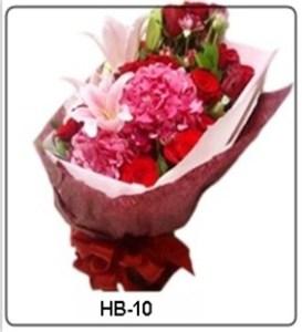 HB10-1