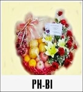 PBB04-1