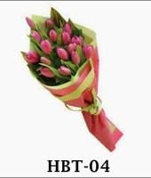 hbt-04