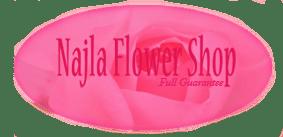 logo-najla2-copy