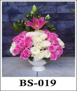 BS019