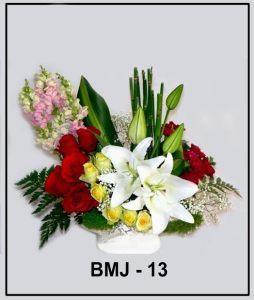 BMJ13