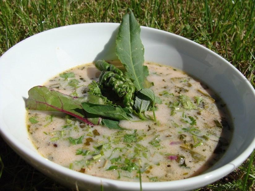 Lekka i zdrowa wiosenna zupa z chwastami, ziołami i warzywami