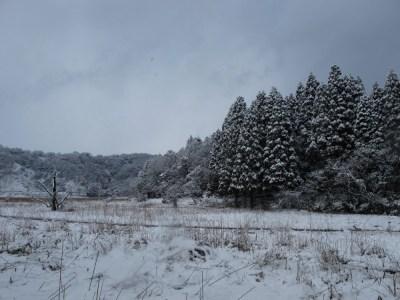 江尻の雪景色