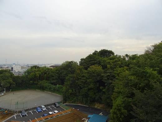 サングレイス愛甲石田