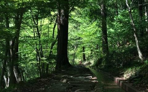 中津川の「付知峡不動滝」をみてきた