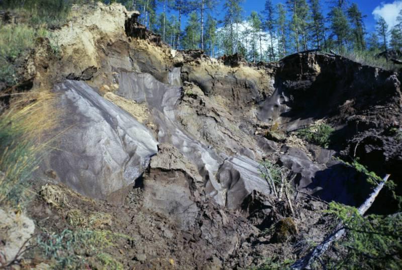 В Сибири зафиксировали рекордно высокую температуру
