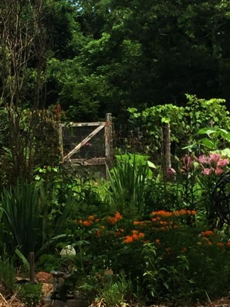 east wind community herb garden
