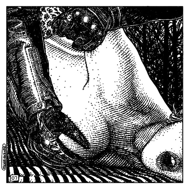 20160822_asc 668_Les rendez-vous du crépuscule (Visitors in the twilight)_07_300dpi_14x14 copy