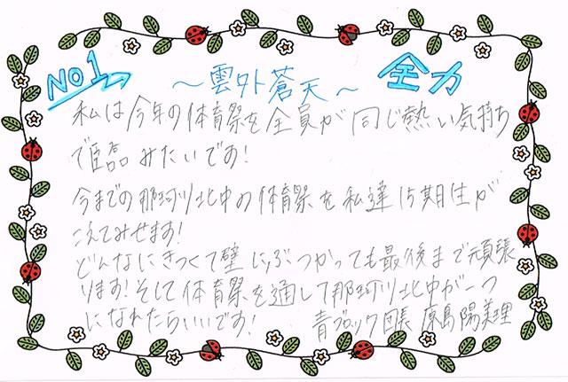 那珂川北中学校 平成30年度体育祭 青ブロック長 抱負