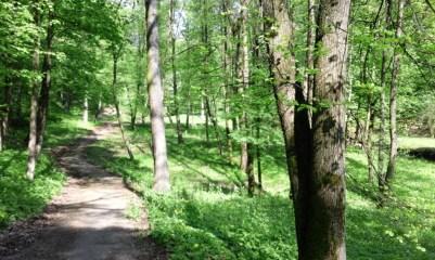 Dolina Mickiewicza w Kownie