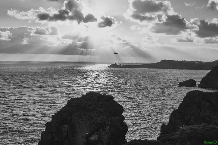 Fort La Latte - la Roche Goyon - et l'Anse des Sévignés, depuis la Fauconnière du Cap Fréhel