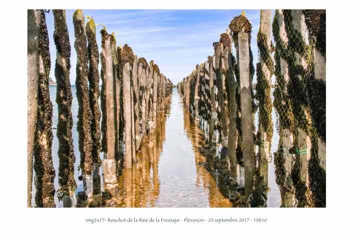 portfolio du photomarcheur - bouchots dans la baie de la fresnaye