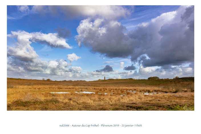 portfolio du photomarcheur - la lande autour du Cap Fréhel