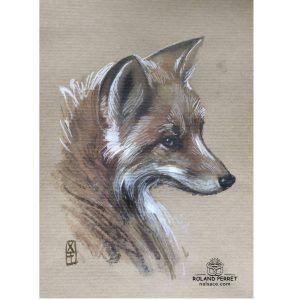 Renard Roux - dessin original sur papier kraft par Roland Perret - série des renards