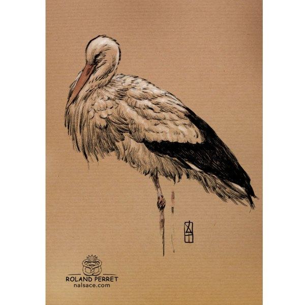 Cigogne de profil - dessin original sur papier kraft par Roland Perret - série des cigognes