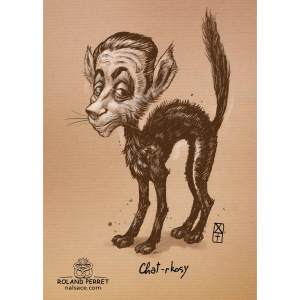 Chat-rkosy - Sarkosy chat politique- dessin original sur papier kraft par Roland Perret - jeu du chat-llenge