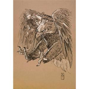 Etude d'un aigle chargeant- dessin original sur papier kraft par Roland Perret - série des rapaces. nalsace.com