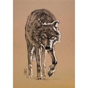 Loup marchant - dessin original sur papier kraft par Roland Perret - nalsace.com. Série des loups