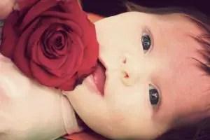 Nama Bayi Perempuan Yang Artinya Mawar