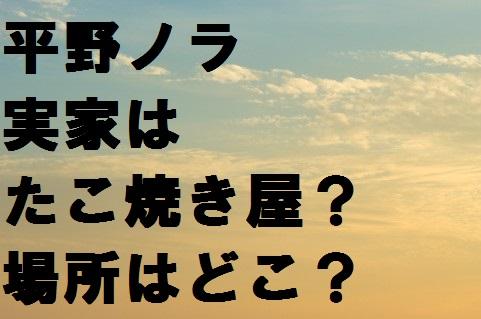 平野ノラの実家は我孫子市のたこ焼き屋?超人気店で評判が良い?
