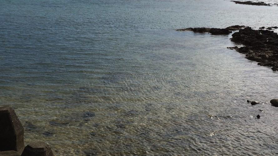 山漁港の釣り場紹介(鹿児島徳之島)リーフの広がるエギング漁港