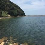 津井漁港の釣り場紹介(淡路島南淡)常夜灯エギングとショアジギング