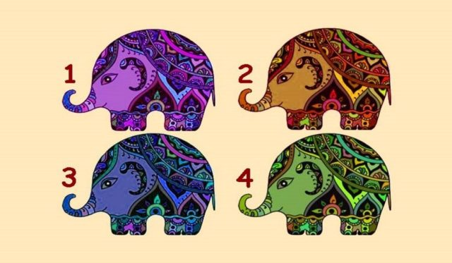 Discover What Your Strength Is by Choosing an Elephant